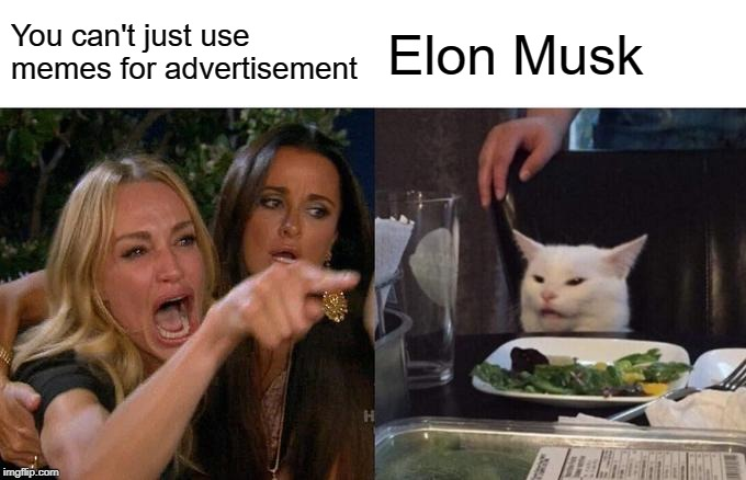 meme marketing statistics